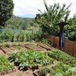 Green Your Weekend – Garden Inspiration