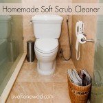 This is great! Homemade soft scrub recipe and non-toxic bathroom cleaning tips from LiveRenewed.com