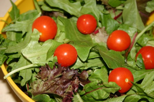 SH-Food-salad4