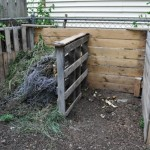 My Compost Pile!