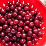 Preserving Summer's Bounty – Freezing Berries
