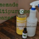 31 Days to Green Clean: Homemade Multipurpose Cleaner