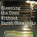 cleaning the oven without harsh chemicals
