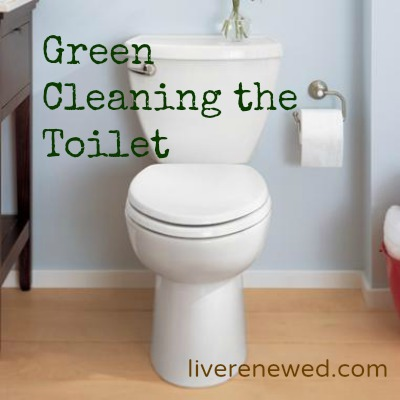 Green Cleaning the Toilet without the Harsh Chemicals