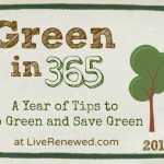 Green in 365: Living Room – Plug in a Power Strip