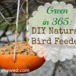 Green in 365: Winter Craft – DIY Natural Birdfeeder