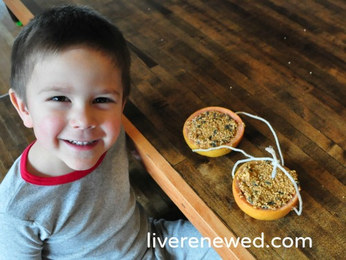 Homemade Natural Bird Feeders