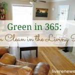 Green in 365: Green Cleaning in the Living Room