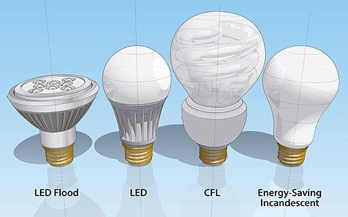 switch to energy efficient lightbulbs