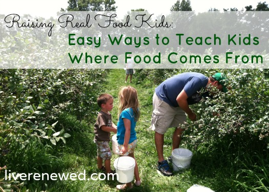 How to teach your kids where real, local and seasonal food comes from - simple and easy tips!