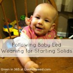 Following Baby Led Weaning for Starting Solids