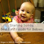Best First Foods for Baby {Green in 365: Baby & Child Care}