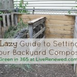 The Lazy Guide to Setting Up Your Compost Bin {Green in 365: Spring }