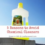 5 Reasons to Avoid Chemical Cleaners: Green Spring Cleaning {Green in 365}