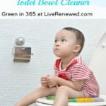 Make Your Own Toilet Bowl Cleaner {Green in 365: Bathroom}
