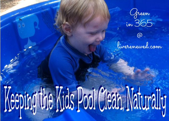 keeping the kids pool clean naturally green in 365 summer