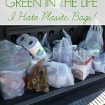 Green in the Life – I HATE Plastic Bags {Green in 365}