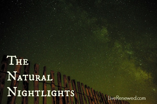 The Natural Nightlights at LiveRenewed.com
