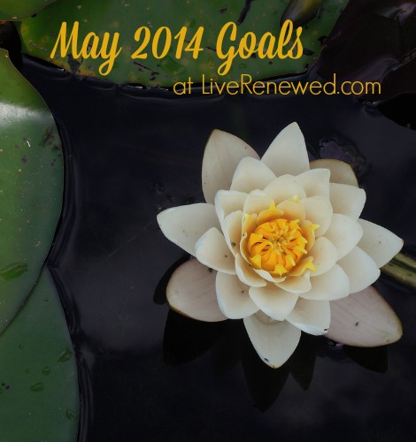 May 2014 goals at LiveRenewed.com