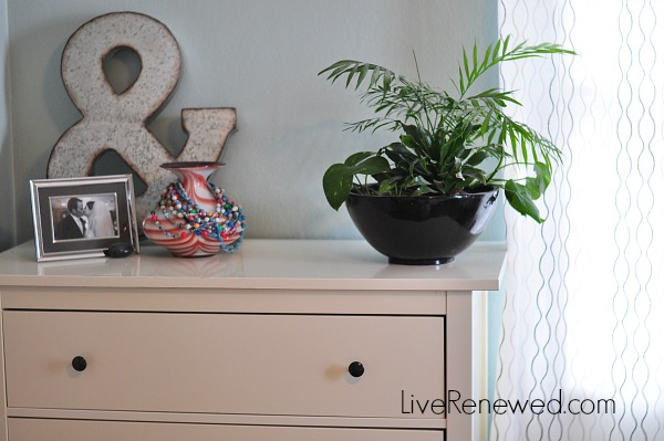 Using houseplants to detox the air in your home at LiveRenewed.com