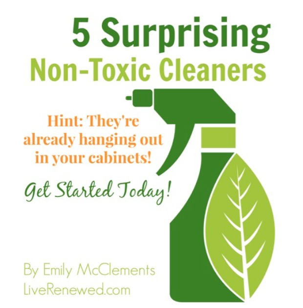 Get your Free Green Cleaning Guide!