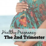 The second trimester of pregnancy is a great time to continue (or start) healthy and green habits and changes. As well as begin getting ready for baby to arrive!