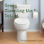 31 Days to Green Clean: Cleaning the Toilet Without Harsh Chemicals