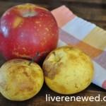 Homemade Apple Treats