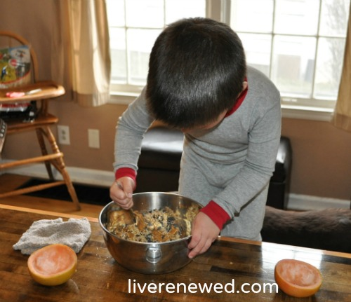 Making Homemade Natural Bird Feeder