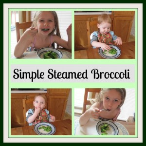 Simple Steamed Brocolli