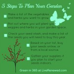 5 Steps to Plan Your Garden for the Beginning Gardener