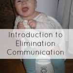 An Introduction to Elimination Communication {Green in 365: Baby & Child Care}