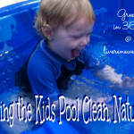 Keeping the Kids Pool Clean, Naturally {Green in 365: Summer}
