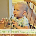 Green in the Life – Reusable Straws {Green in 365}