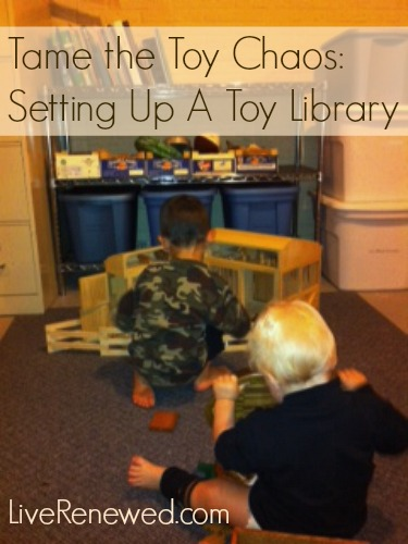 Tame the Toy Chaos: Setting Up a Toy Library at LiveRenewed.com