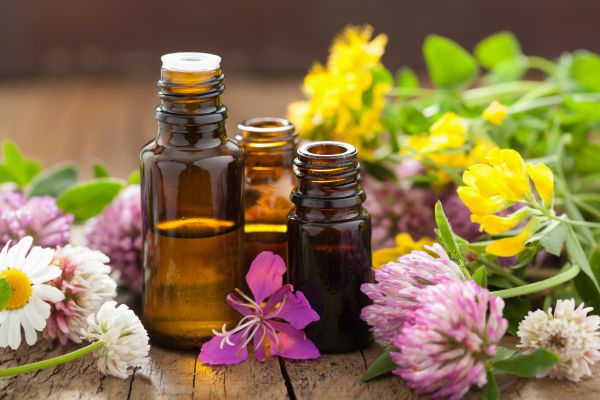 How comfortable do you feel with using essential oils for your family?
