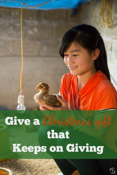 Make generous giving to those less fortunate and more vulnerable a part of your family's gift giving tradition this year with the Samaritan's Purse Gift Catalog
